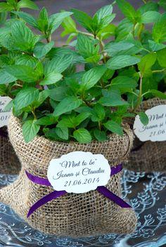#mint #aromaticplants #plantemarturii #marturiiplante #plantecadou #marturii#nunta #botez #marturiimenta #marturiiplantearomatice #plantearomatice #favors #plantfavors #aromaticfavors