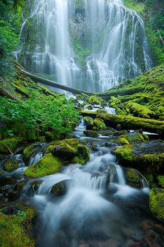Edenistical Flow, Proxy Falls | Oregon (by Rick Lundh)