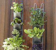 Linear Succulent Planter