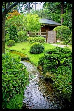 Japanese Garden Theme For A Getaway In Your Own Backyard Small Japanese Garden, Japanese Garden Design, Japanese Gardens, Japanese Plants, Zen Gardens, Japanese Landscape, Water Gardens, Ponds Backyard, Backyard Landscaping