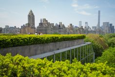 A view from the Roof Garden Commission at the Met