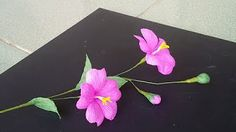 ABC TV paper flowers - YouTube