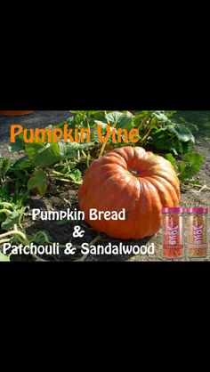 PZ recipe www.Pinkzebrahome.com/thaynarollins