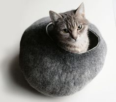 Pet Accessories - page 2