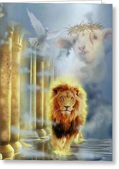 The Lion of Judah! The Lamb of God! The Dove of The Holy Spirit! God and Jesus Christ Lion And Lamb, New Jerusalem, Tribe Of Judah, Prophetic Art, Lion Art, Jesus Pictures, Jesus Is Lord, Jesus Son, King Of Kings