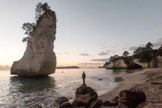 It's no secret that Cathedral Cove is a MUST-DO when in New Zealand, but how can you make the most of your visit, so that it's truly memorable? Weather In New Zealand, Fly To New Zealand, New Zealand Beach, Visit New Zealand, Beach Cars, Beautiful Sunrise, White Sand Beach, Beach Trip, Where To Go