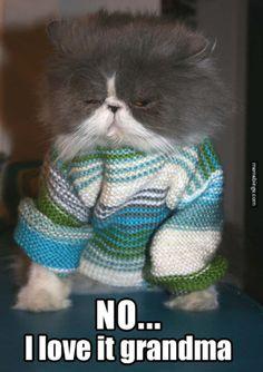 What a cute sweater!