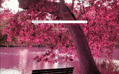 Pink Leaves Theme from ShinySearch