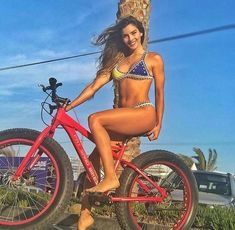Searching for the best mountain bike within your budget? Here is our updated list of 5 best mountain bike under 300 dollars. Bicycle Women, Bicycle Girl, Best Mountain Bikes, Mountain Biking, Best Mtb, Hardtail Mountain Bike, Pocket Bike, Downhill Bike, Retro Bike