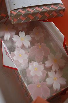 私の小さなおうち 桜がいっぱい