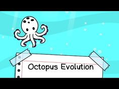 Octopus Evolution - Clicker Game for iPhone and Android Clash Of Clans, Clicker Games, Online Tests, Itunes, Octopus, Evolution, Android, Make It Yourself, Ios