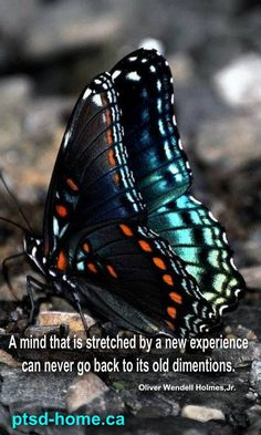A stretched mind can't go back. #PersonalLeadership #Women