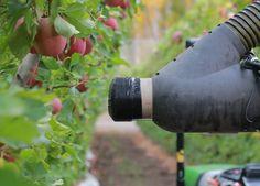 Abundant Robotics raises $10 million to commercialize its apple-picking robot