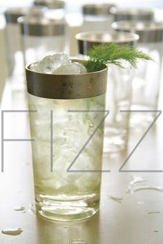 Fennel Fizz-1 (2-inch) piece fennel, sliced (stalk only) 4 sage leaves 1 pinch coarse salt 2 ounce citrus infused vodka (or London dry gin, as you prefer) ½ ounce Green Chartreuse 1 ounce freshly squeezed lemon juice ¼ ounce herbal lemon syrup, made with mixed herbs (see notes) 3 ounce club soda (or more as needed) 1 fresh fennel frond (as garnish)