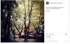 Desktop Screenshot, Instagram, 10 Years, Journaling, Fotografia