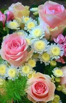 A 70 pieces jigsaw puzzle from Jigidi Very Beautiful Flowers, Beautiful Flowers Wallpapers, Beautiful Flower Arrangements, Amazing Flowers, Pretty Flowers, Floral Arrangements, Rose Flower Photos, Flower Planters, Arte Floral