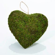 Hanging Moss-Covered Heart Decoration