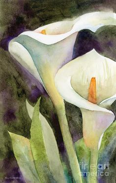 Calla Lilies Painting More