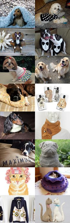 Pets Give Us Smiles by SassySashadoxie on Etsy--Pinned with TreasuryPin.com