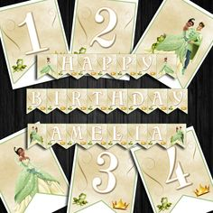 Tiana Princess & the Frog Banner Party Bunting, Bunting Banner, Banners, Printable Numbers, Printable Letters, Princess Birthday, Princess Party, Minnie Mouse Pink, Alphabet And Numbers