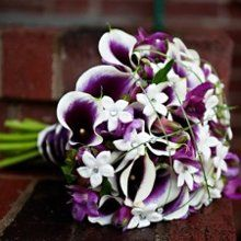Similar to this for your bouquet, but add in dark purple stock.