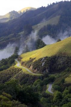 Skyline Blvd near San Jose CA  Panoramio - Photo of Windy Hill 3, San Mateo County, California