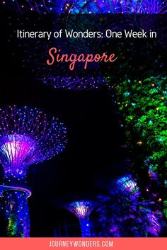 Is Singapore worth visiting? Read all about Singapore from both a Tourist and a Business Traveler Viewpoint. Plus,the best food places in Singapore.
