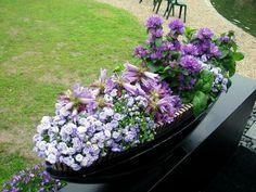 Impactante arreglo de flores en azul claro, lilas y violeta.