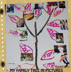 My Funny Family: Family Tree Stick Crafts for Preschool! #Playfulpreschool • The Preschool Toolbox Blog Preschool Family, Family Crafts, Toddler Preschool, Preschool Crafts, Family Tree For Kids, Family Tree With Pictures, Family Tree Art, Tree Crafts, Craft Stick Crafts