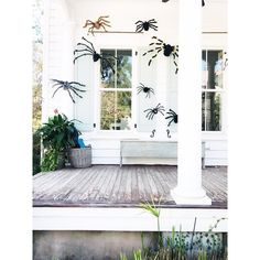 @abitofcharleston | Charleston, South Carolina | Not a huge 🕷 fan but this is pretty amazing 🕸 #charleston South Carolina, Charleston, Oversized Mirror, Fan, Amazing, Pretty, Instagram, Home Decor, Hand Fan