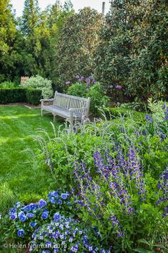 Our Blue Garden, photo by Helen Norman for Southern Living