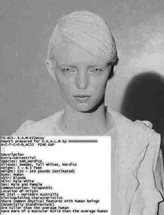 In search for the beautiful Extraterrestrial Annunaki Female or SAM Nordic