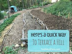 Oftentimes we're challenged with less-than-ideal landscapes. Here's a solution to stop erosion on a hillside and create an easily-navigable garden.