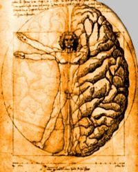 Mente e corpo: dimensione unica.