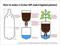 """Hydroponic Gardening Ideas Sub-Irrigated Planter Project - Last Week the students at Green Life Academy built self watering planters using old 2 liter bottles. These sub-irrigation (aka """"self-watering"""") planters are better than any pot you can… Soda Bottles, Plastic Bottles, Water Bottles, Empty Bottles, Recycled Bottles, Cut Bottles, Reuse Bottles, Recycled Planters, Recycled Tires"""