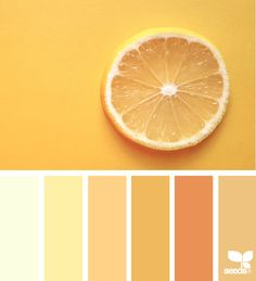 Design Seeds help and create color palettes Color Schemes Colour Palettes, Pastel Colour Palette, Colour Pallette, Color Palate, Color Combos, Orange Color Schemes, Orange Color Palettes, Summer Color Palettes, Color Yellow