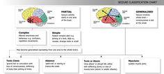 Seizure Classification. Partial vs. generalized and Partial Complex vs Partial Simple. Also Tonic Clonic vs Absence vs Atonic/Tonic vs. Myoclonic