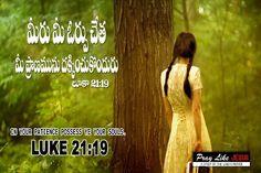Jesus Christ Quotes, Gods Promises, Word Of God, Telugu, Bible Quotes, Our Life, Catholic, Prayers, Words