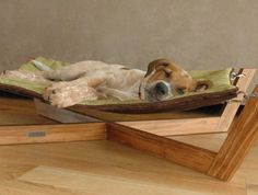 Designed for small dogs and cats, this original Bambu Hammock is perfect for your pet to chill. It was created by Pet Lounge Studios, they design eco-friendly modern luxury pet furniture & acessories. The Hammock features a stre Wood Dog Bed, Pallet Dog Beds, Stuffed Animal Storage, Diy Stuffed Animals, Dog Hammock, Hammocks, Dog Furniture, Furniture Ideas, Furniture Design