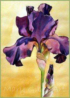 Art of Mary Gibbs, Elke's Iris, watercolor Iris Painting, Silk Painting, Art Floral, Watercolor Flowers, Watercolor Paintings, Watercolors, Iris Art, Iris Flowers, Botanical Art