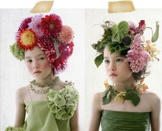 flores del sol: flower heads