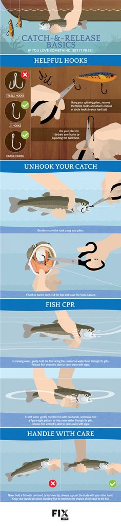 to Catch-and-Release Fishing Do you know how to do CPR on a fish? Learn here with our guide to catch-and-release fishing!Do you know how to do CPR on a fish? Learn here with our guide to catch-and-release fishing! Bass Fishing Tips, Fishing Knots, Gone Fishing, Kayak Fishing, Fishing Guide, Fishing Basics, Fishing Tricks, Fishing Tackle Box, Walleye Fishing