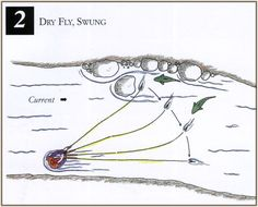 Fly Fishing Cartoon   fly fishing techniques dry fly swung