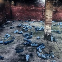 """The power to disengage our attention from one thing and move it to another is essential for well-being."" - Daniel Goleman -  -  #quote #friday #danielgoleman #artsyfartsy #juxtapose #bluesuedeshoes #blue #red #brick #basement #urbex #rurex #abandonedbasement #art #oopsiarted #shoes #blueshoes #chaos #focus #mismatch #ff #iphoneonly #latergram #fridaynightlife #vsco #vscocam #explore"