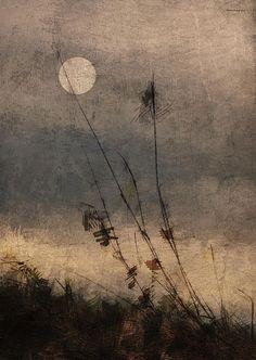 "passionplenty:  ""Last Light"" byRon Jones"