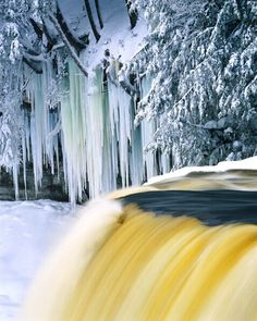 Tahquamenon Falls, Upper Peninsula, Michigan * Went there on our honeymoon! Michigan Usa, Michigan Travel, Northern Michigan, Lake Michigan, Michigan Waterfalls, Great Lakes Region, Upper Peninsula, To Go, All Nature