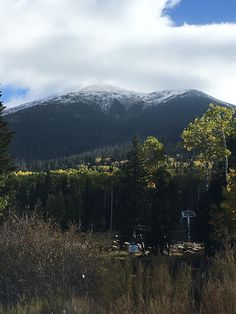 Humphreys Peak Coconino National Forest #hiking #camping #outdoors #nature #travel #backpacking #adventure #marmot #outdoor #mountains #photography