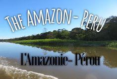 Visiting the Amazon -Visiter L'Amazonie