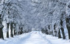 For recruiters, the winter season can throw up some roadblocks, but you have a choice. Are you going to let the storm outside hold you down, or are you going to recruit in a winter wonderland? Pocono Mountains, Winter Road, Winter Wallpaper, Winter Painting, Winter Scenery, Snowy Day, Winter Photos, Winter Beauty, Amusement Park