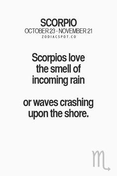 ZodiacSpot - Your all-in-one source for Astrology All About Scorpio, Scorpio Love, Scorpio Sign, My Zodiac Sign, Astrology Signs, Astrology Scorpio, Taurus, Scorpio Zodiac Facts, Scorpio Traits